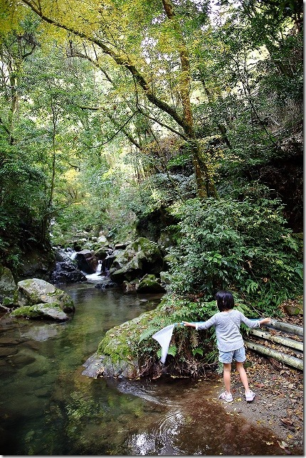 秋の野河内渓谷 入口付近