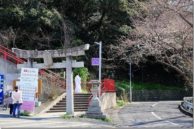 愛宕神社 桜まつり