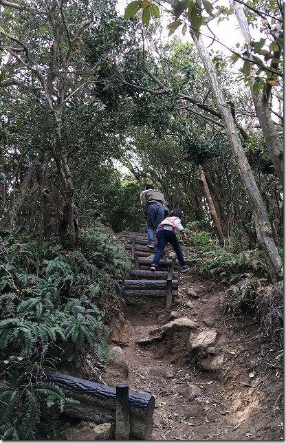 糸島 立石山の登山道