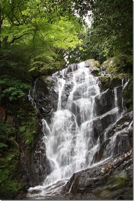 夏の白糸の滝と村上家本舗 白雪のかき氷(混み具合、待ち時間、渋滞)