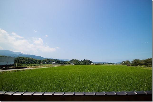 糸島、田園喫茶ワイルドベリーからの風景