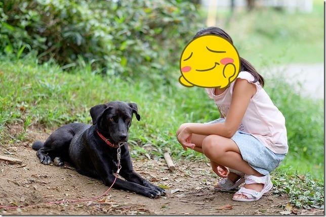 ラスティック・バーンの犬と子供