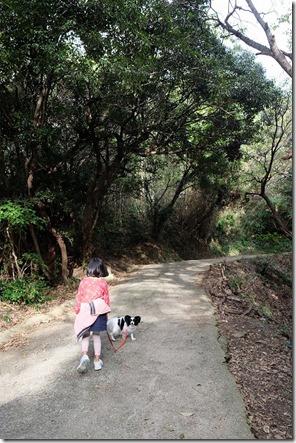 毘沙門山の登山道