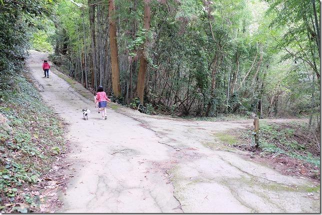 毘沙門山の登山道の三叉路