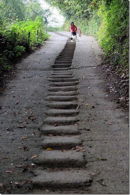 毘沙門山の登山道の階段