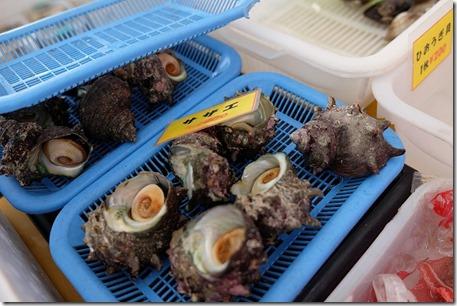 糸島牡蠣小屋、福吉漁港・伸栄丸(佐々木)のサザエ