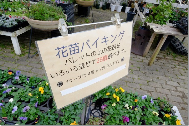 糸島市、アートグリーン緑化センターの花苗バイキング