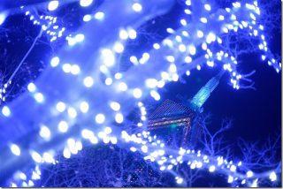 福岡タワーのクリスマスイルミネーション2017