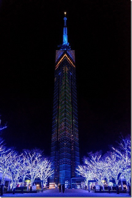 福岡タワーのクリスマスツリーのイルミネーション