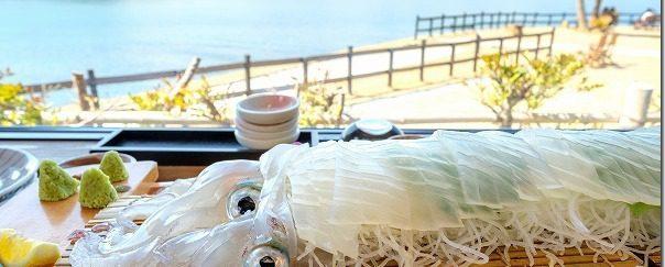糸島で活きイカ