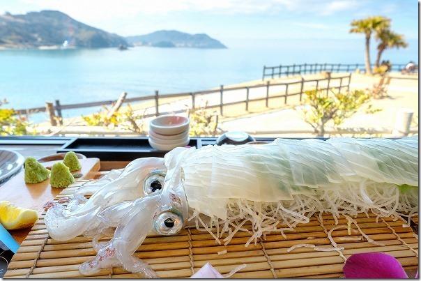 糸島波平のイカ活き造りと海