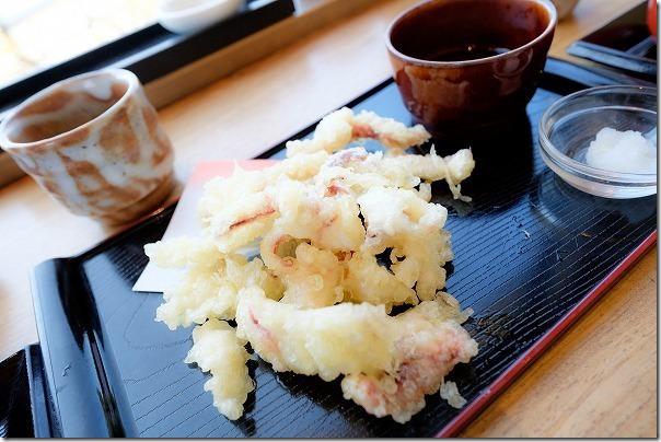 糸島波平のイカ活き造りの天ぷら