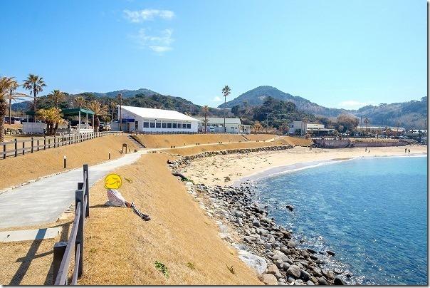 波平の前、パームビーチの砂浜