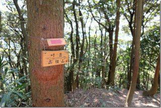 飯盛山から叶岳(日向山、高地山を経由)ルートを子供と登山