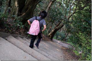 叶岳から生松台中央公園へ下山(子供と登山)