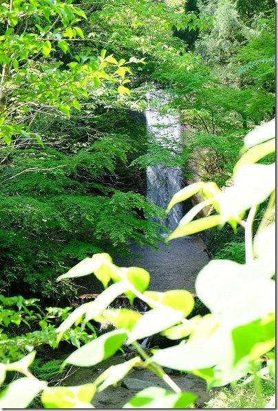 雷神社から渓流を散策