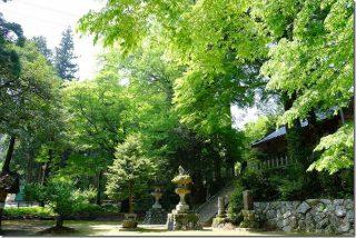 新緑の雷神社(糸島市雷山)