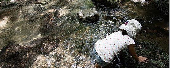 野河内渓谷で水遊び