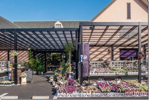 福岡市西区の西の丘にあるガーデニングショップ「エフェクト」店頭
