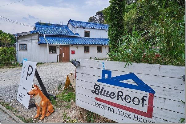 糸島櫻井,ブルールーフ (Blue Roof)