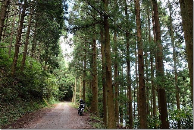 糸島,不動池への道