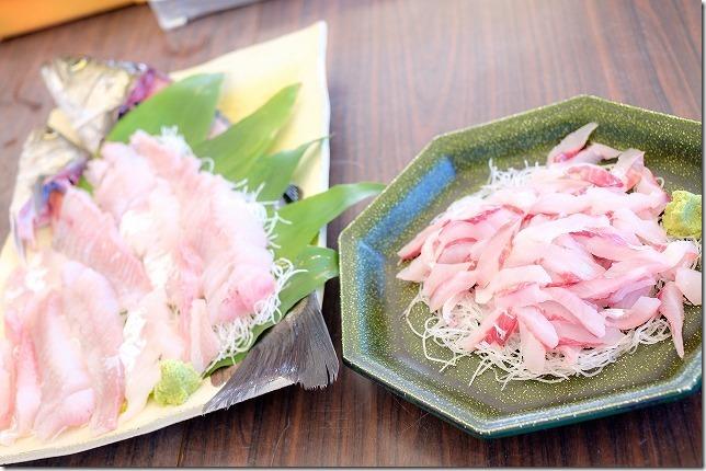 糸島,初音旅館で地引網で取れた魚をお刺身に