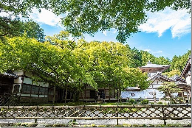 雷山千如寺大悲王院の10月の大楓