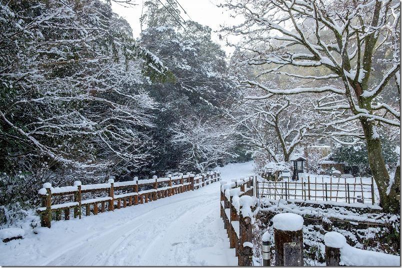 野河内渓谷への入り口付近の道路、雪