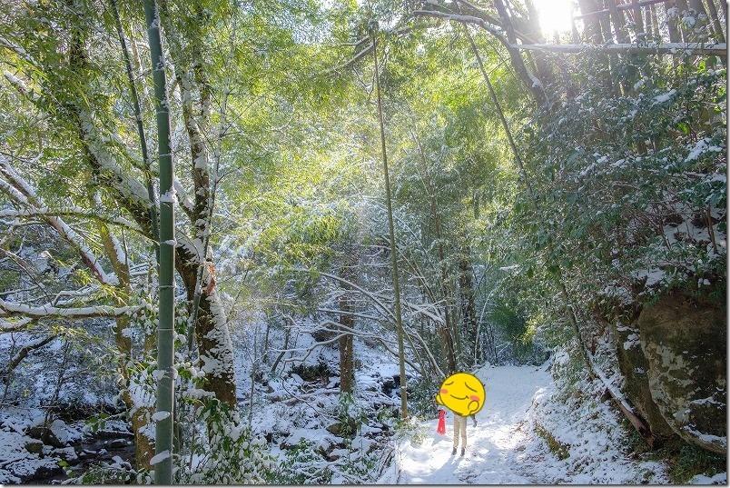 冬の野河内渓谷と雪、光と雪吹雪