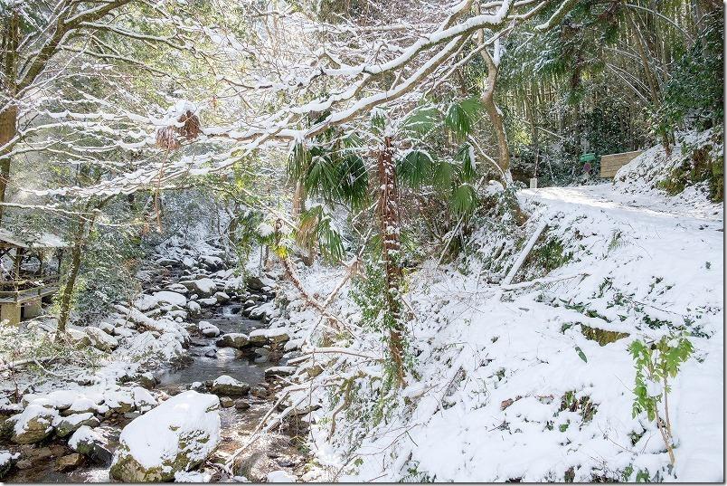 冬の野河内渓谷と雪