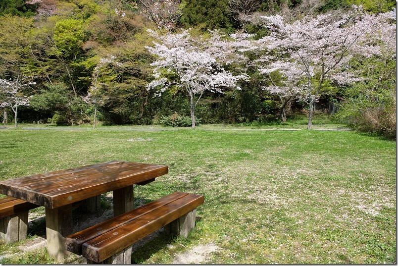 曲渕ダム公園のベンチ、ピクニック