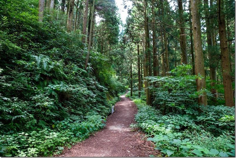糸島・千寿院の滝の駐車場から滝壺までの道