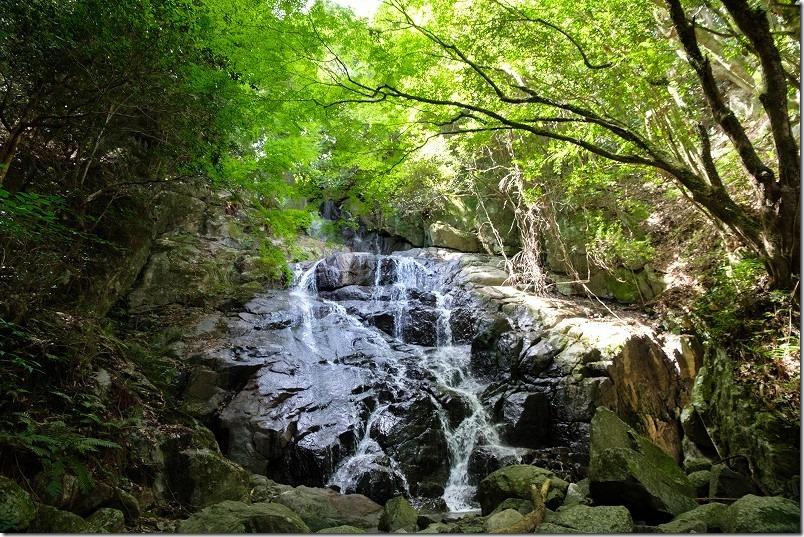 糸島・千寿院の滝とカエデ
